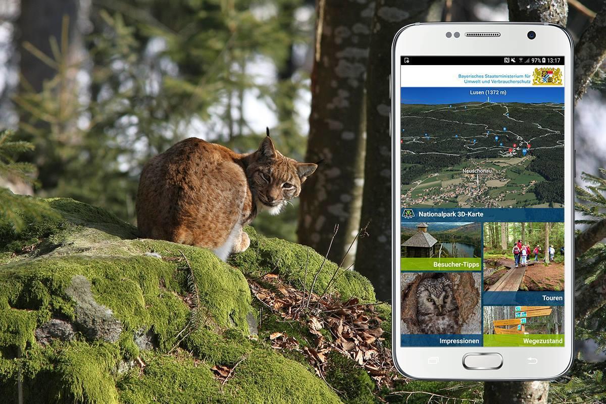 Nationalpark Bayerischer Wald in 3D