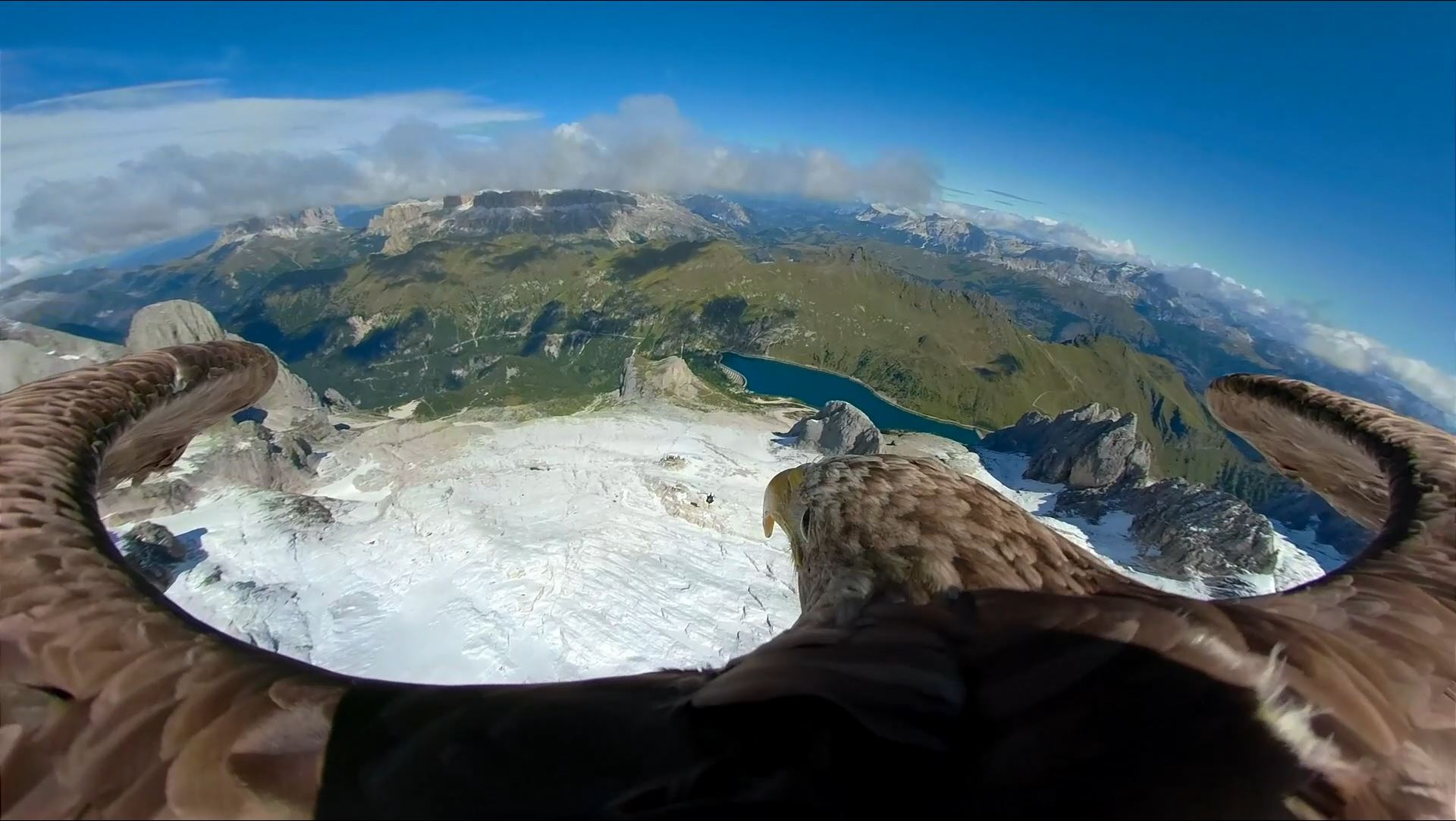 3D RealityMaps unterstützt Eagle Wings